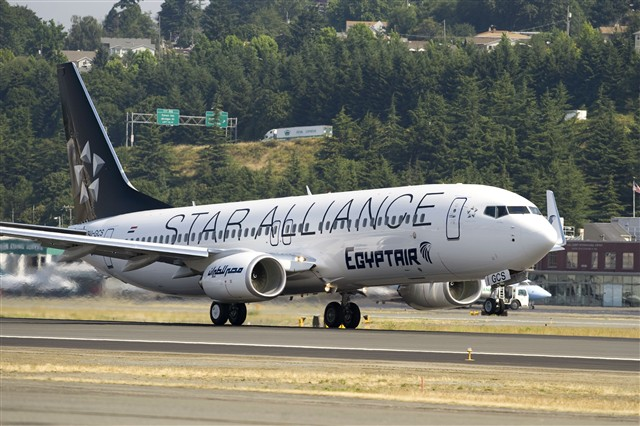 EgyptAir 737-800 in Star Alliance Livery